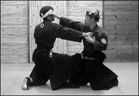 hontaitakagiyoshinryu